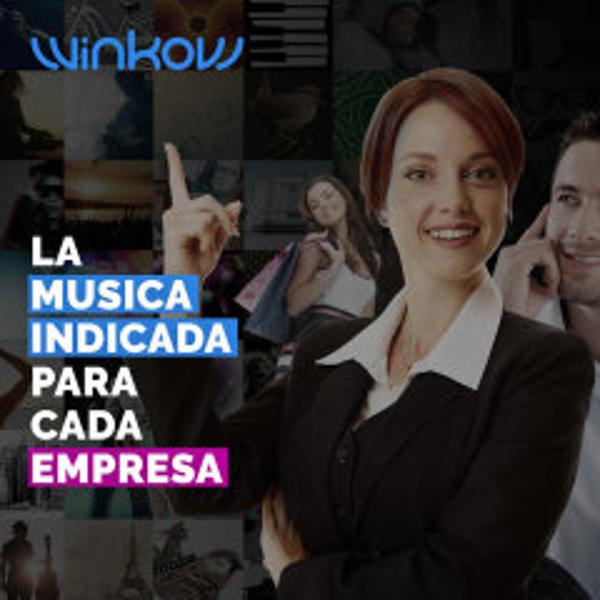 Franquicia WinKow