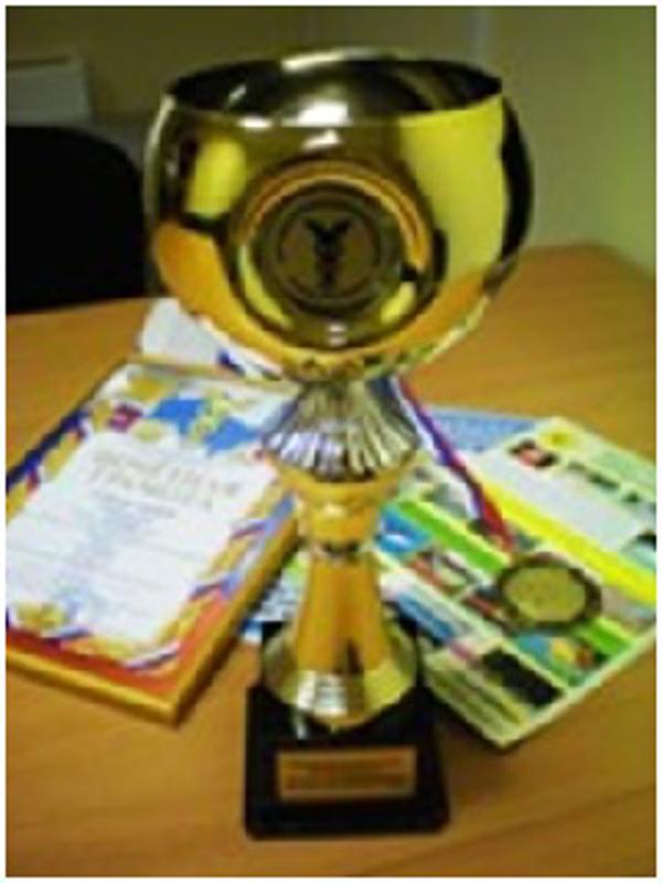 """Masterfibra Jampion– Ganador del concurso """"Mejor Empresario del año 2011"""""""