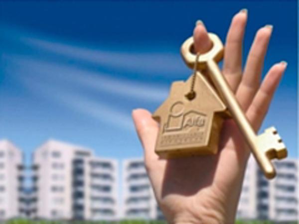 Las franquicias Alfa Inmobiliaria, continuan con su promoci�n All Inclusive